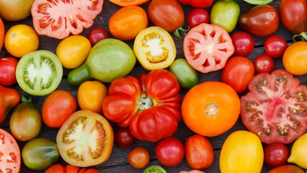 Hybrids versus Heirlooms (and the Truth About GMOs)