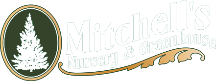 Mitchells Nursery website logo 50 percent