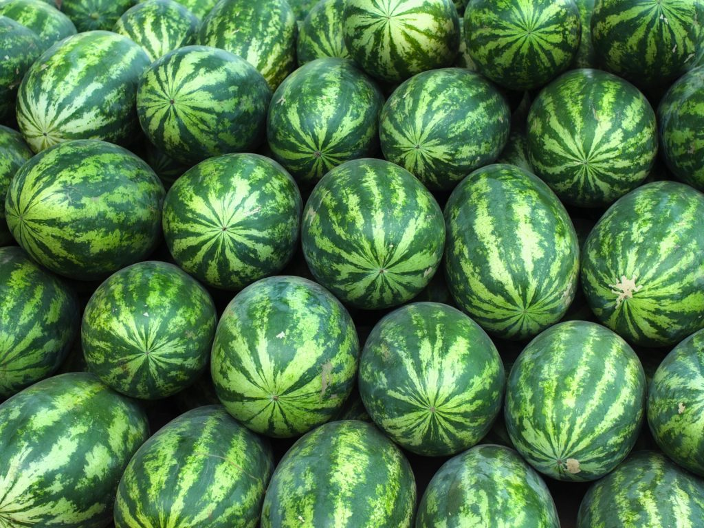 What-ermelon? Four Tips to Choosing the Best Watermelons!