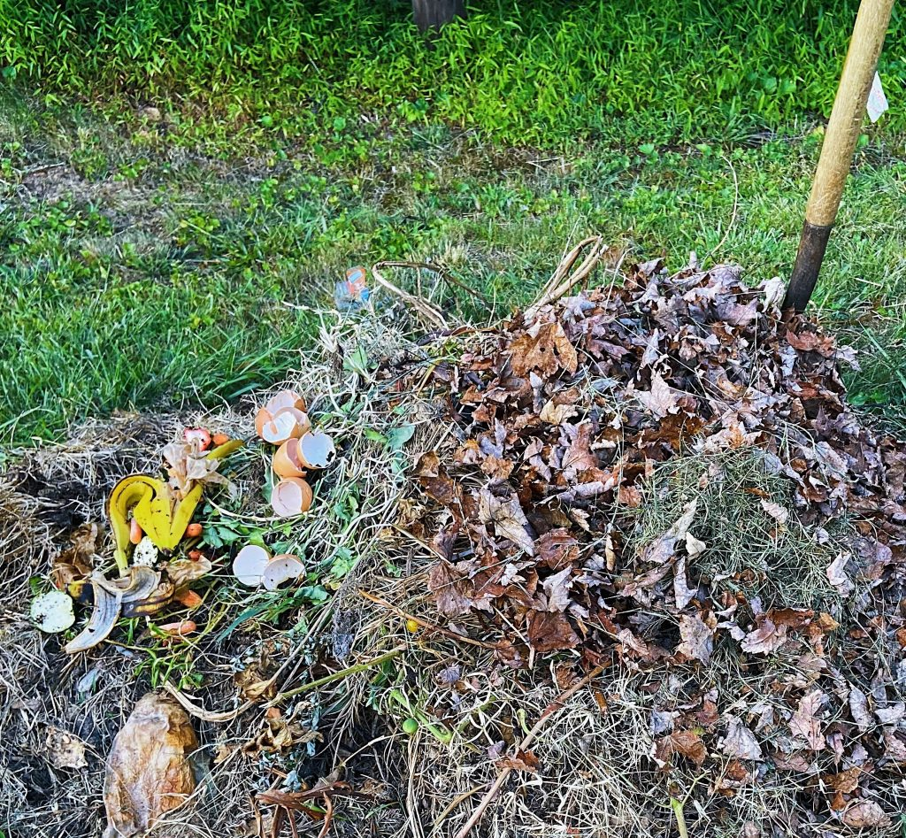 Composting with Autumn Leaves